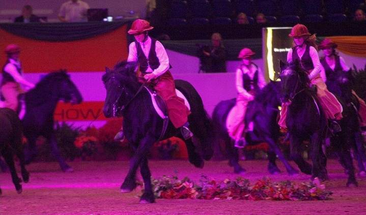 baltic-horse-show-fell-ponys