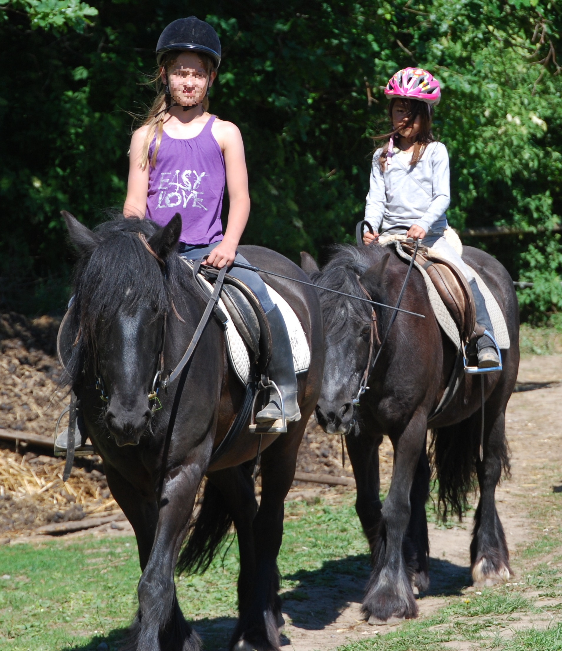 Ausritt Fell Ponys