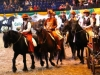 Baltic-horse-show