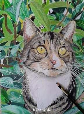 Tierzeichnung_Katze Farbe.jpg