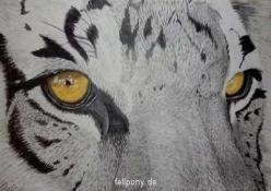 Tierzeichnung_tiger.jpg